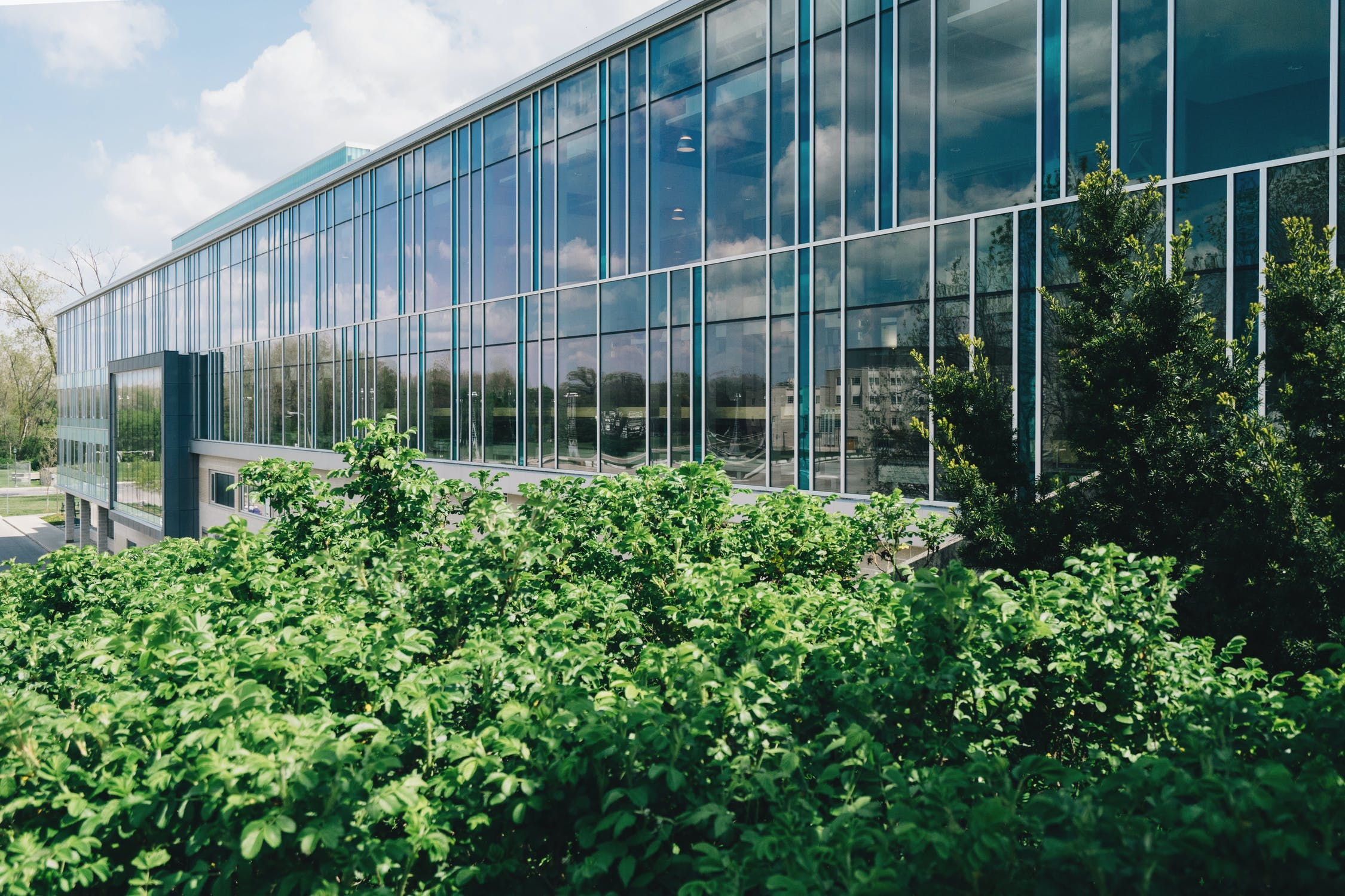 2021 Construction Trends Facilitated By Commercial Window Films - Commercial Window Film in Denver, Colorado